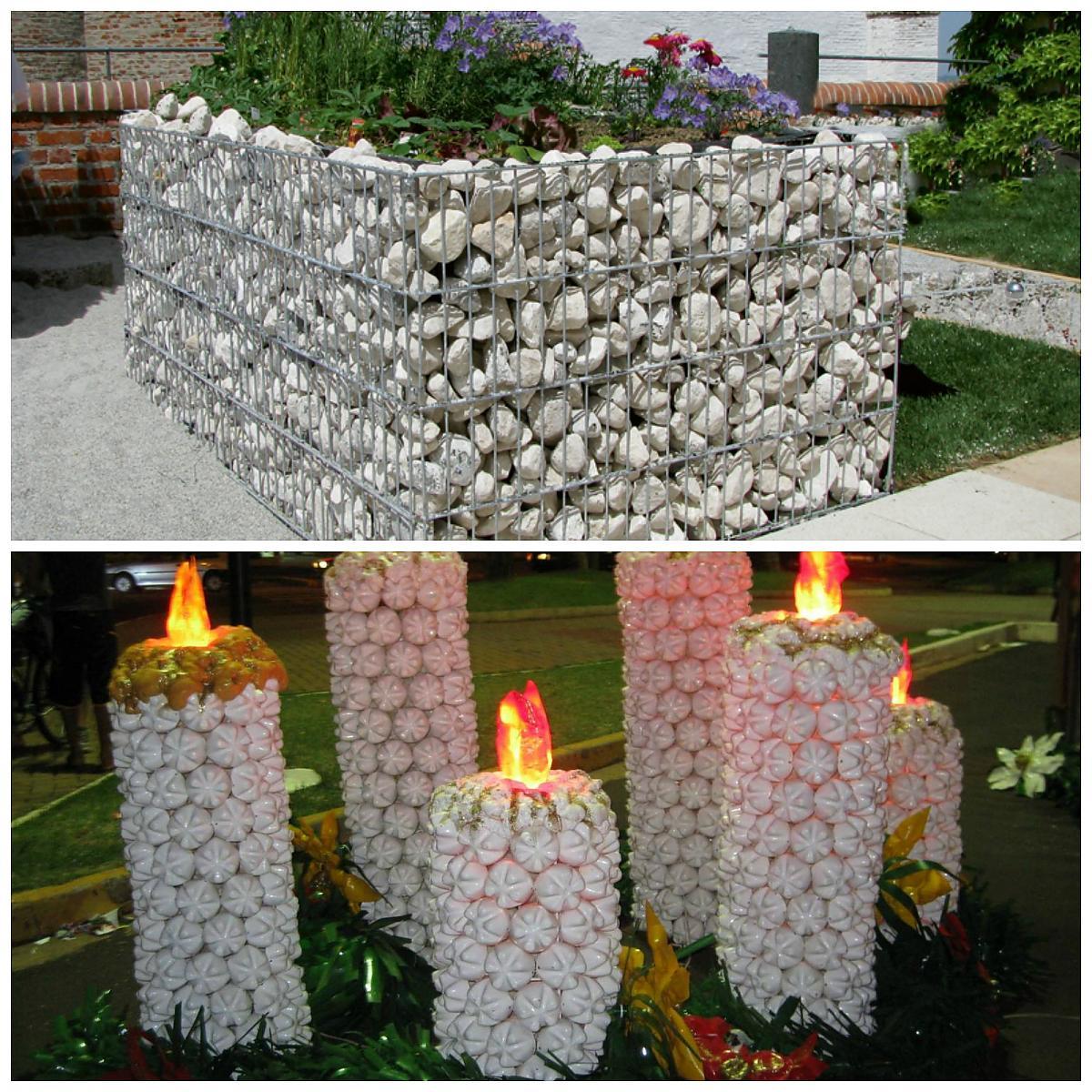 фото цветы в виде колокольчиков