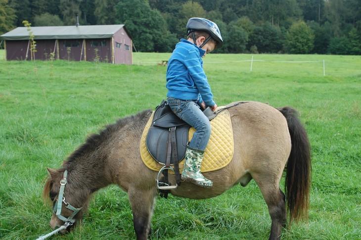 Маленький мальчик учится кататся на пони