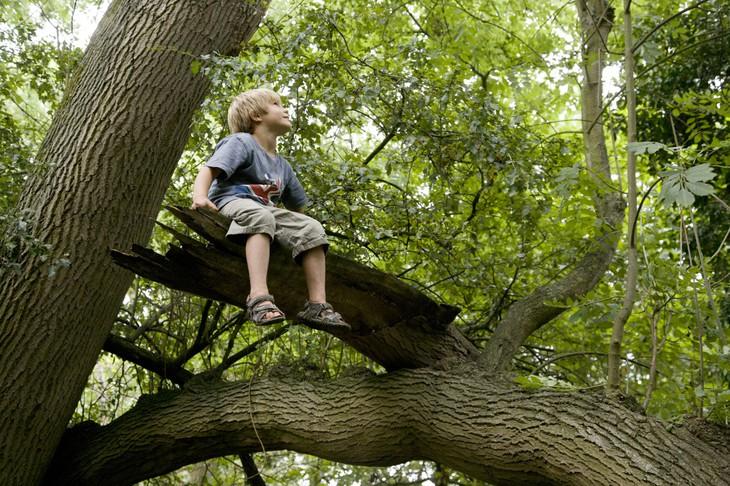 Задумчивый вид мальчика на природе