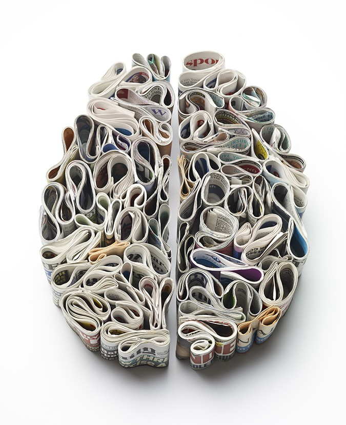 the unusual layout of the human brain-03