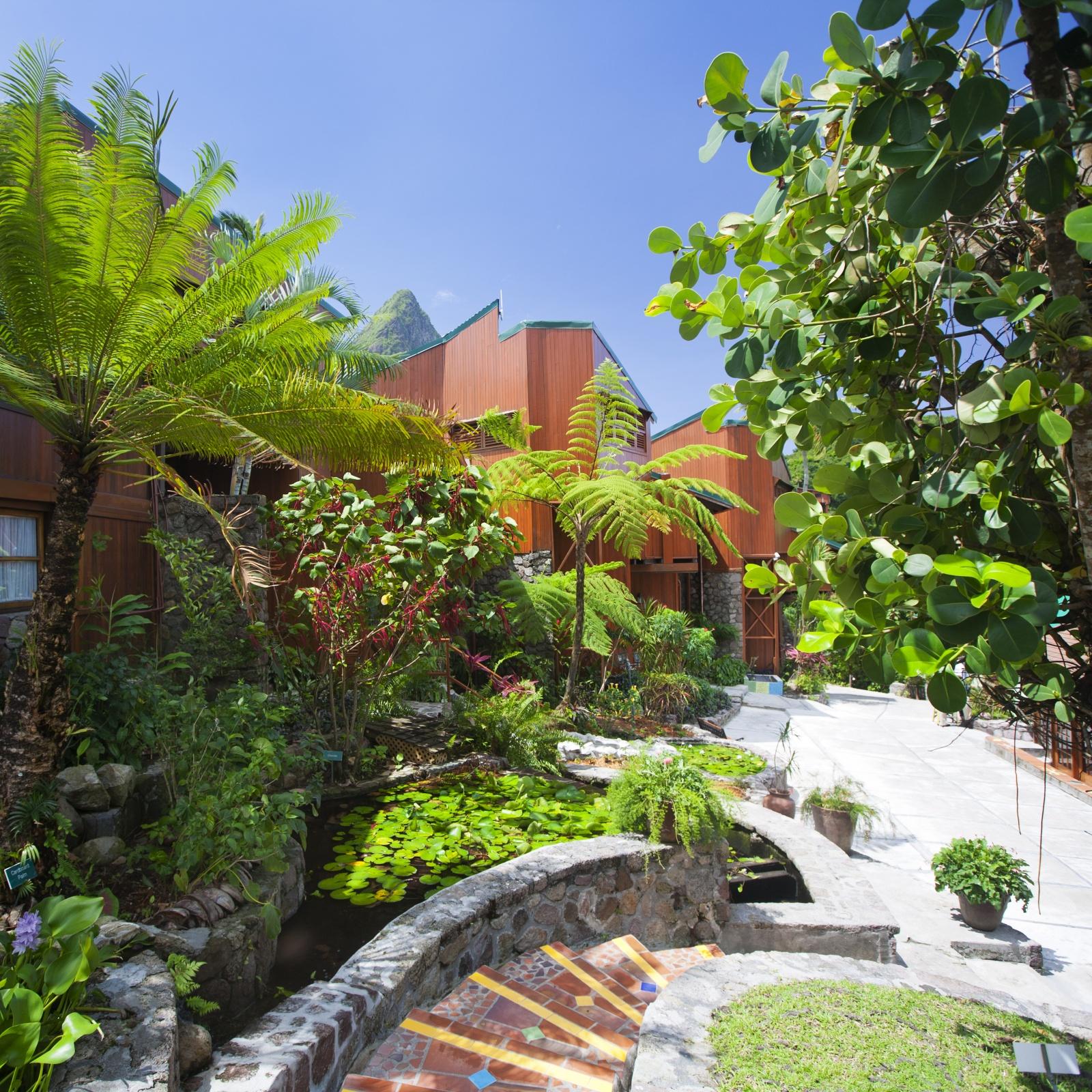Зелень в ландшафте уникального курорта Ladera