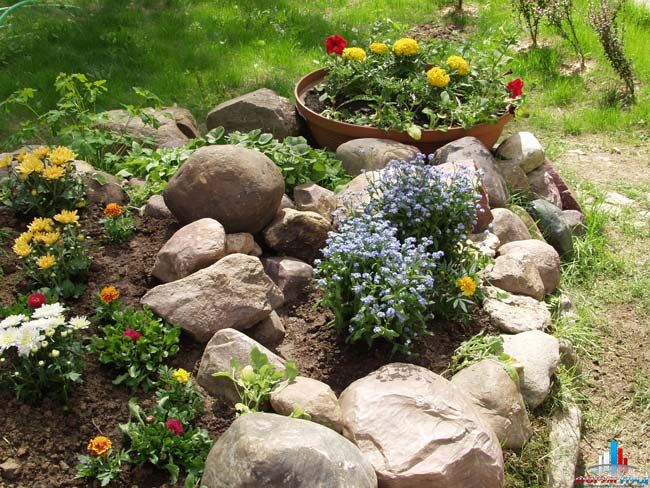 Цветник цветники и клумбы своими