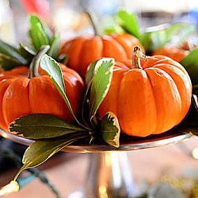 thanksgiving-decoration-ideas-008