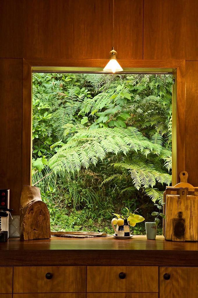 Загородный дом в лесу с видом на залив от новозеландских архитекторов