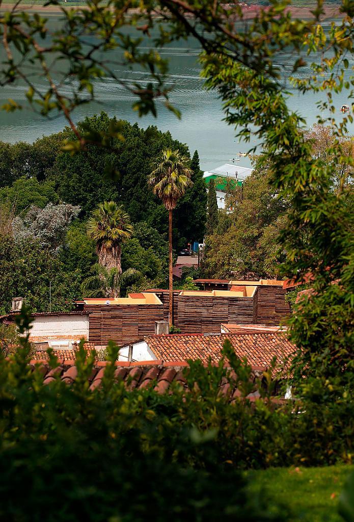 озеленение и благоустройство города фото
