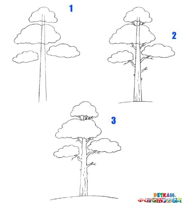 Как нарисовать дерево нарисовать карандашом поэтапно для начинающих 73