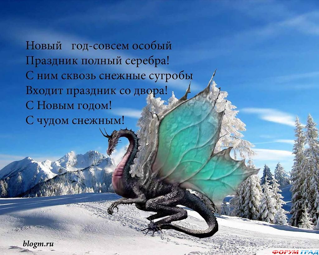 Новый 2012 год поздравление фото 20