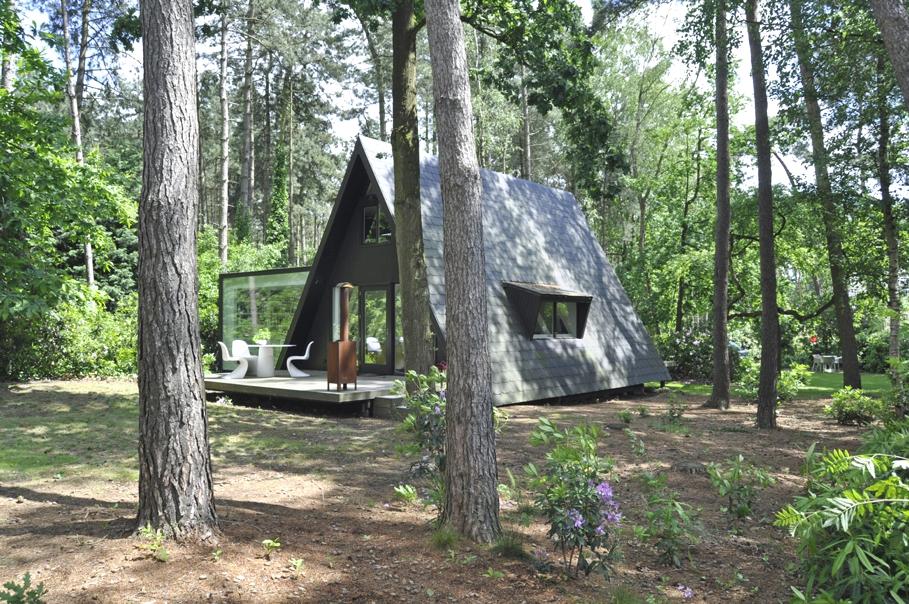 Концептуальный проект небольшого загородного дома
