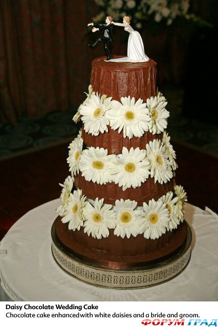 фото всех тортов
