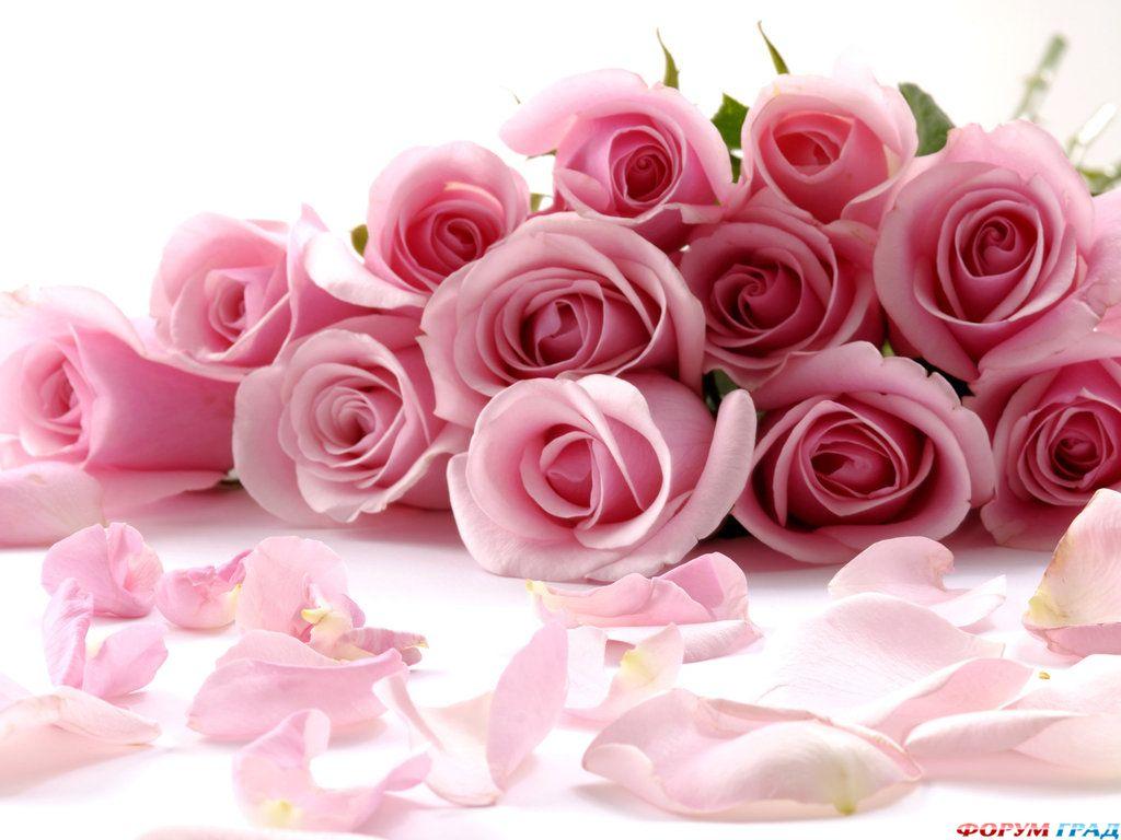 Цветы для красавицы