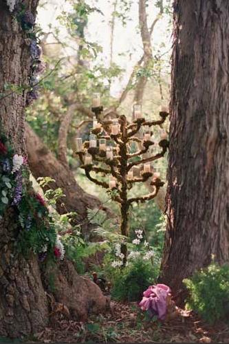 Любые летние лесные и полевые цветы