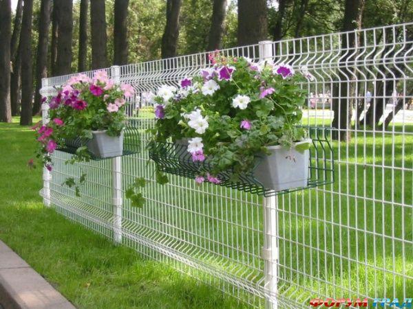 Заборы с цветами 3