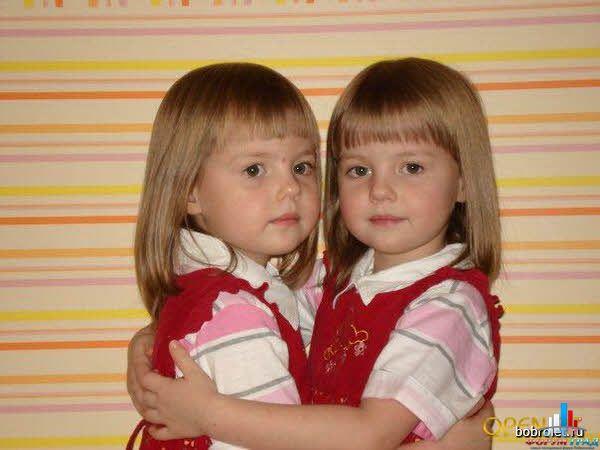 Сладкие двойняшки у меня в пузяшке 2012, часть 4   ЭКО, ИКСИ