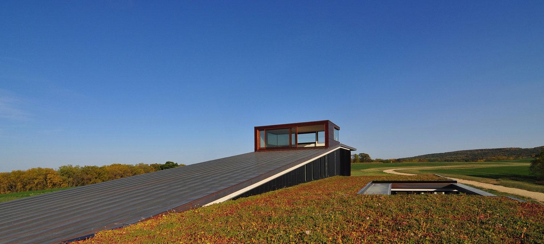 Необычные проекты домов: уютный экологичный дом в Висконсине