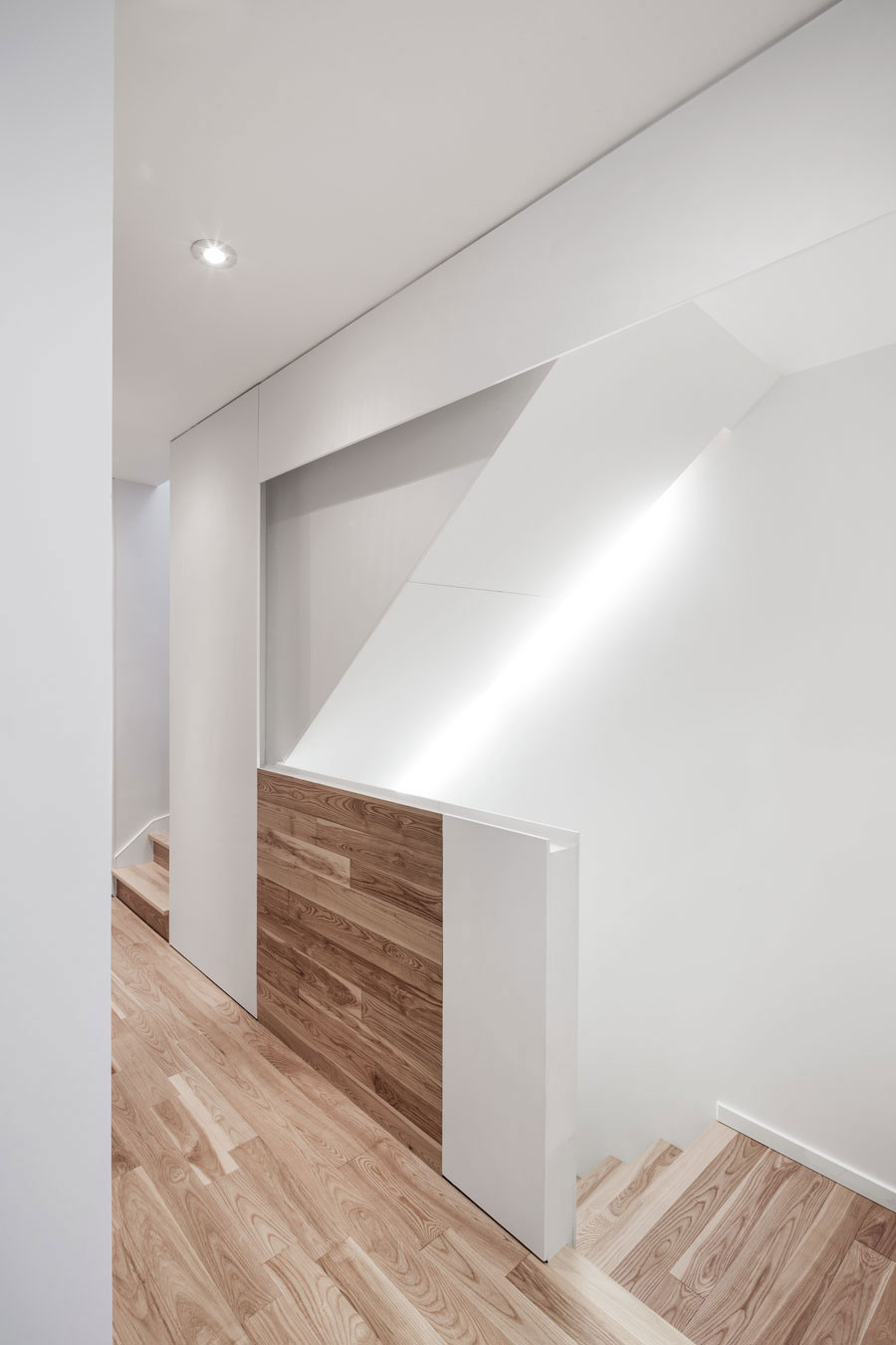Концептуальный дизайн-проект городского дома