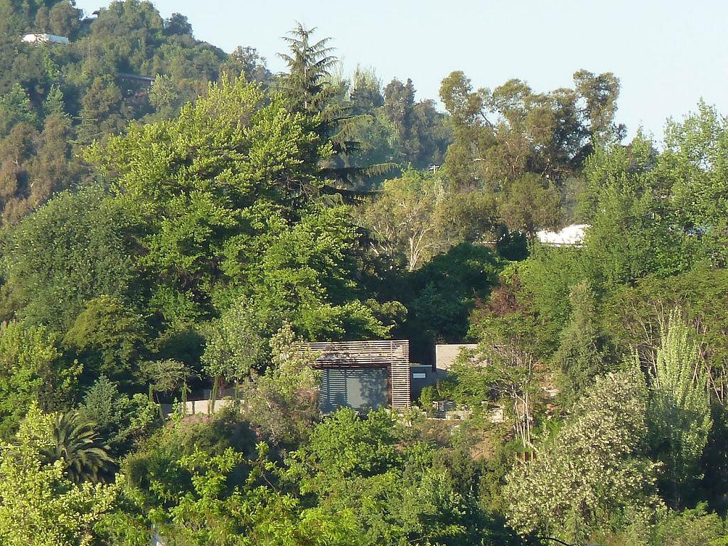 Интересные проекты домов: Loft Lo Curro с бассейном среди цветов и деревьев