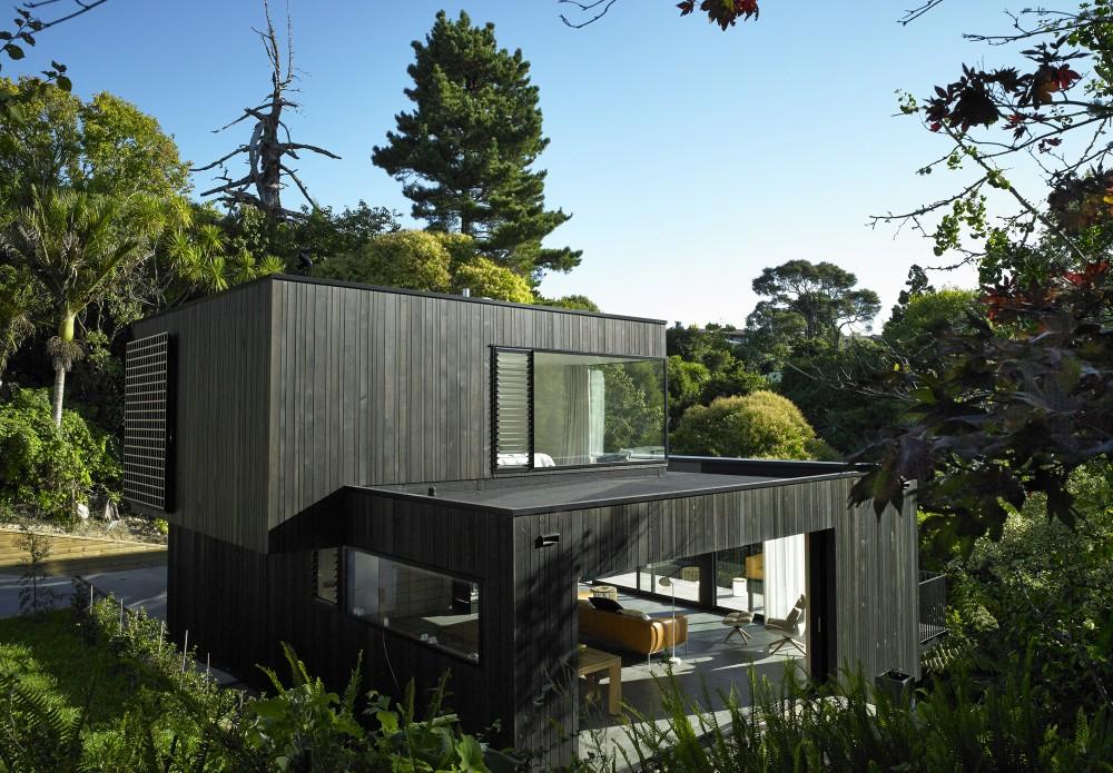 Архитектура лесного дома: уединённый Hamish Monk среди новозеландской природы