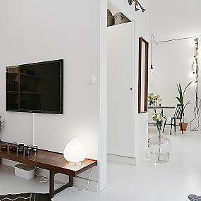 scandinavian-one-room-22