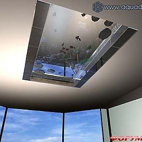 Аквариум - пруд встроен в перекрытие между этажами.  Имеет цельное прозрачное дно (3 м х 1,5 м), которое создает...