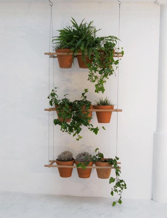 Горшки на стену для цветов