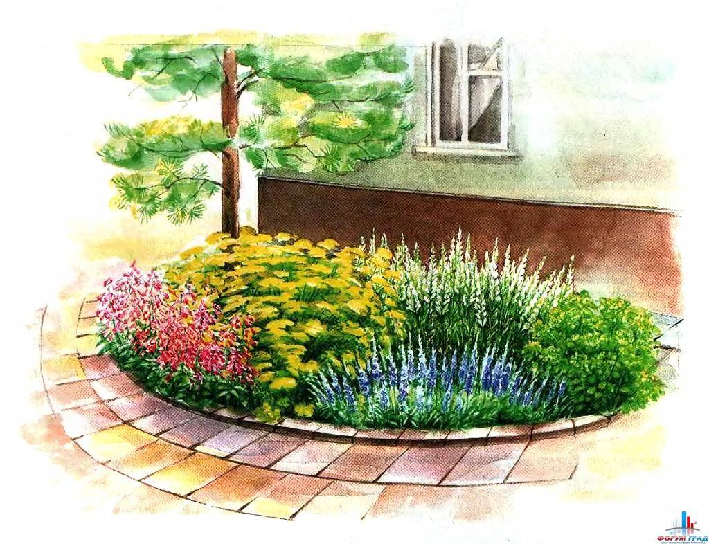 Небольшой бордюр у стены дома рядом с деревом, дающим тень, украсит любой садовый участок.