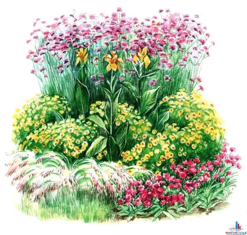Как оформить сад цветами фото клумбы