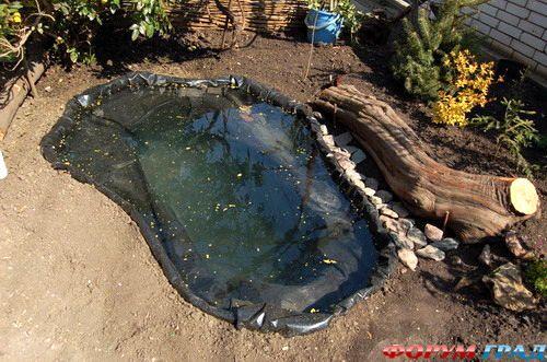Пруд из старой ванны на даче