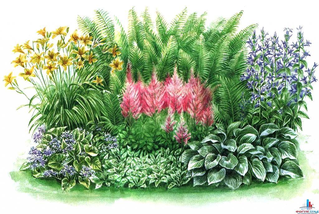 Почва для такого цветника