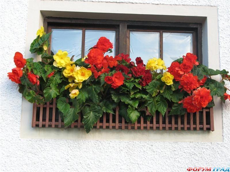 Красивые балконы в европейском стиле.. обсуждение на liveint.