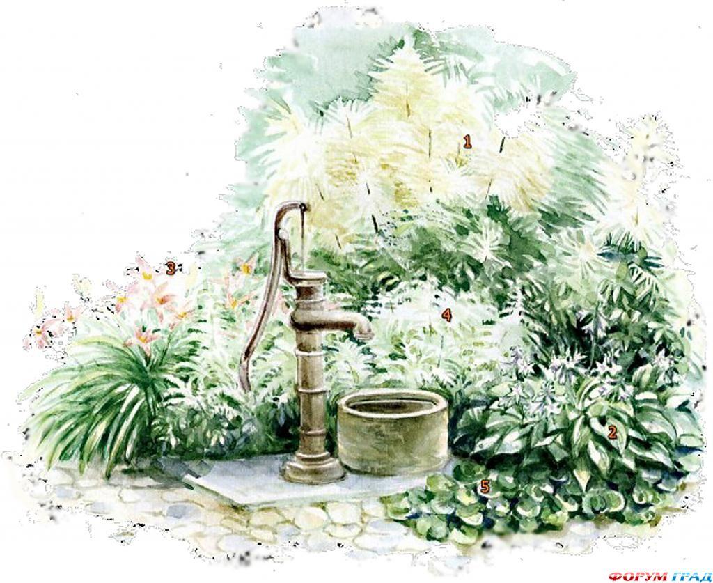 Оформление участка возле садового