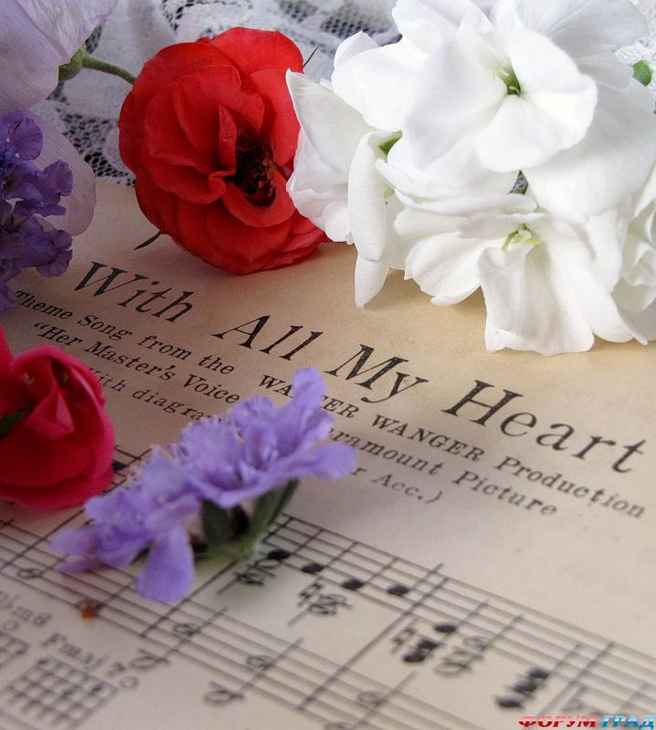 Картинки, цветы и ноты картинки красивые