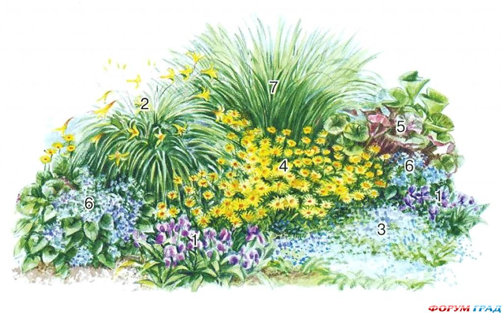 Схемы весенних цветников.