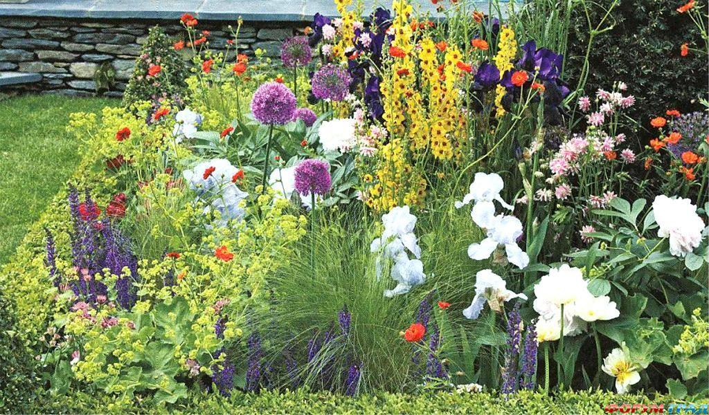 Этот цветник состоит из многолетних растений.  Посаженные один раз, они будут радовать вас много лет.