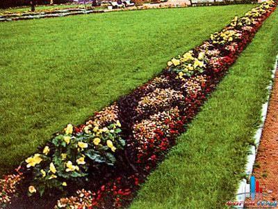 Азбука ландшафтного дизайна: рабатки и их незаменимая роль в ...