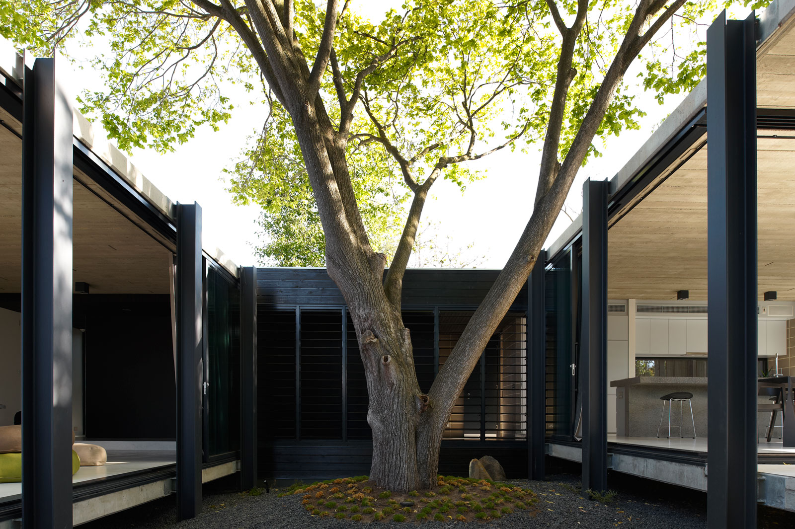 Дом вокруг дерева от Architects EAT в Австралии
