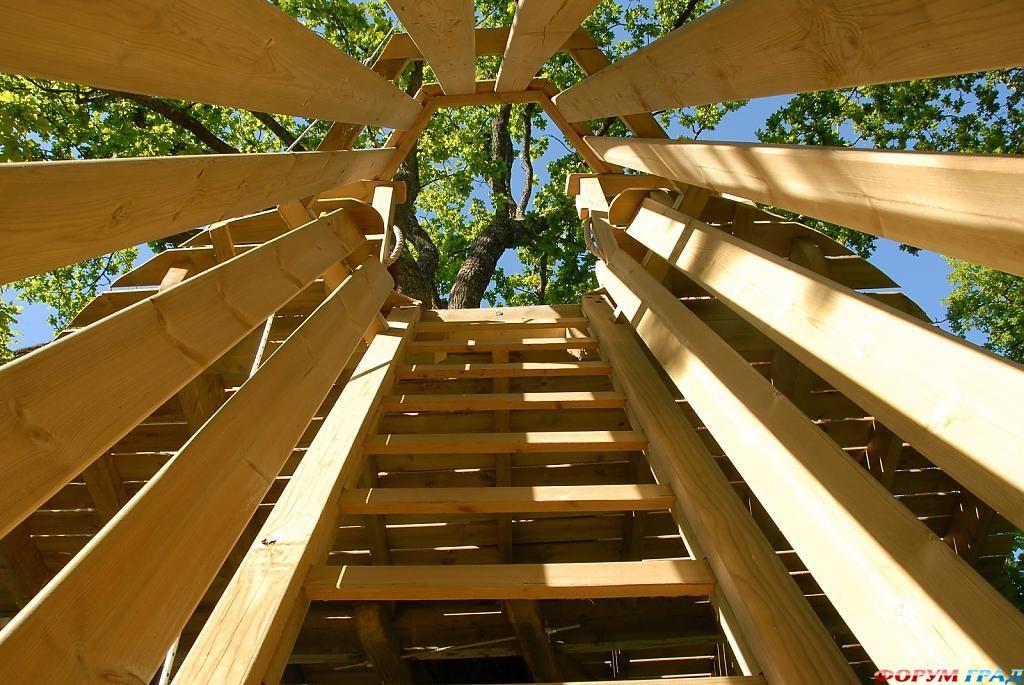 Лестница, ведущая в отель Tree Houses Alicourts