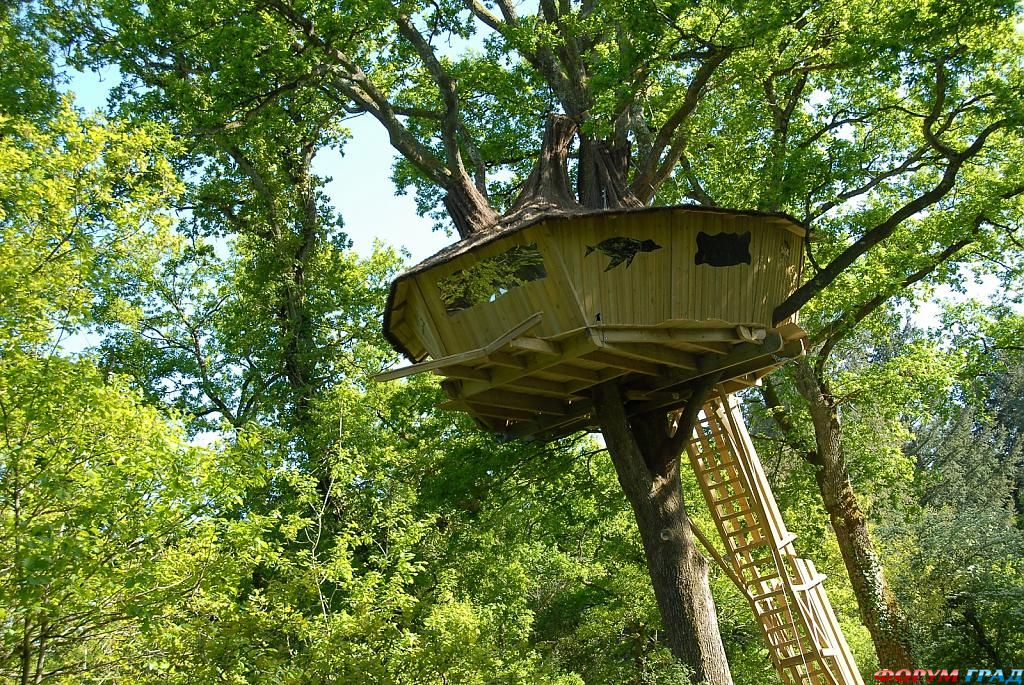 Отель Tree Houses Alicourts