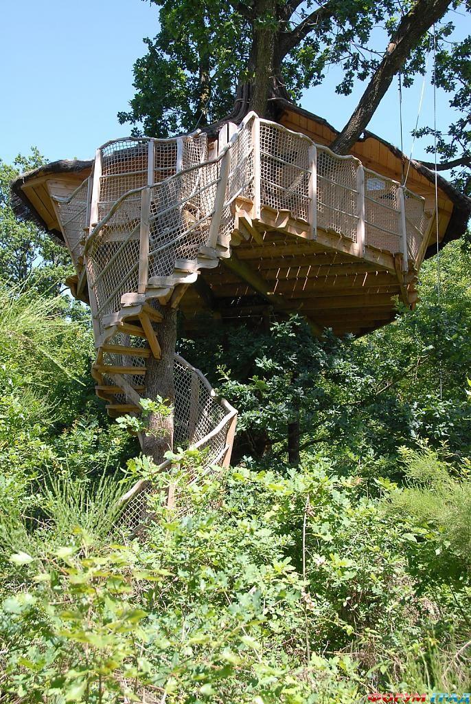 Винтовая лестница отеля Tree Houses Alicourts