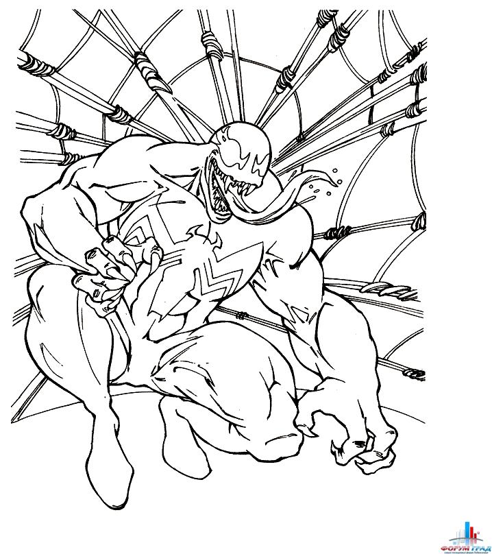 Раскраска - Человек паук