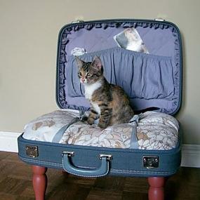 лежанка для кошек вязанная - Сумки