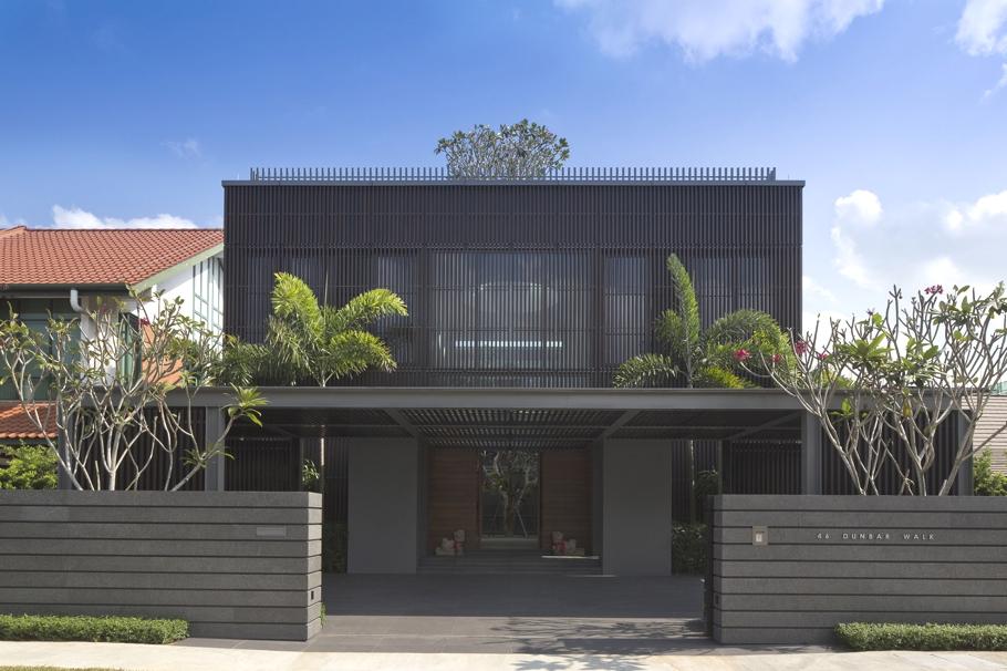 Дом вокруг дерева с патио и бассейном в Сингапуре