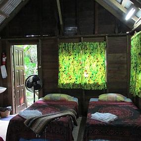 parrot-nest-lodge-beliz-8