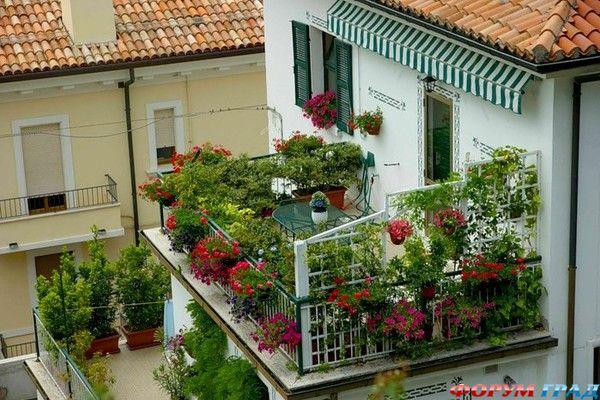 Красивый балкон цветы 92