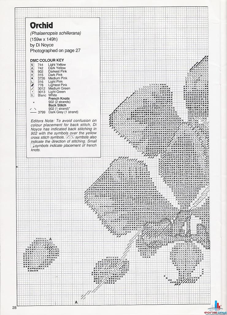 Орхидея. Фаленопсис. Схема 1