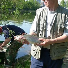рыбалка у бородина как проехать