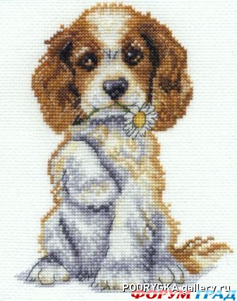 Схема вышивки собак
