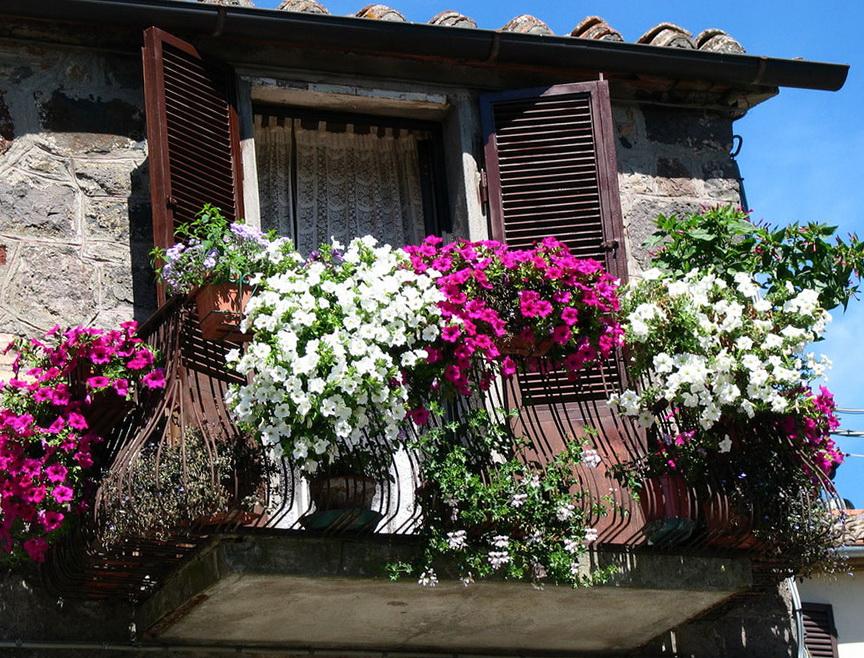 Украшение балкона цветами - предлагаем хозяйкам обмениваться.