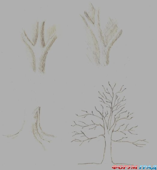 Рисуем дерево поэтапно