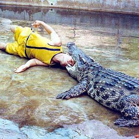 Такое шоу крокодилов сделает путешествие в Тайланд немного горячее.