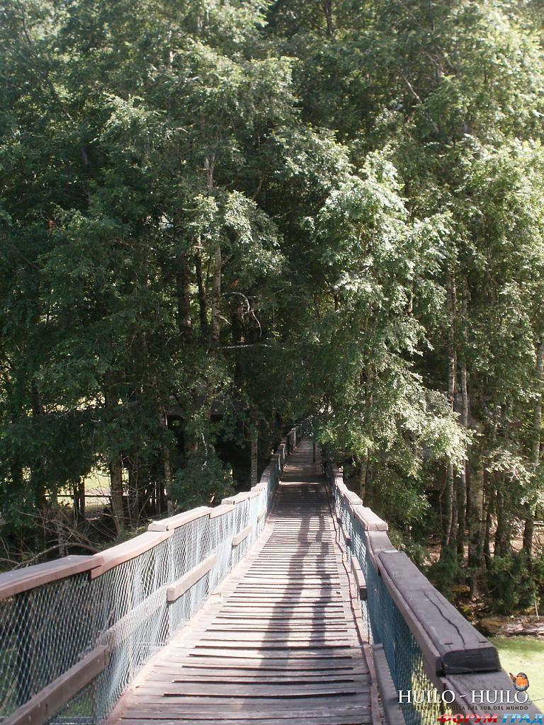 Мост в отеле Canopy Village